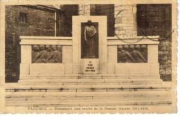 CPSM FLEURUS (Belgique-Hainaut) - Monument Aux Morts De La Grande Guerre 1914/1918 - Fleurus