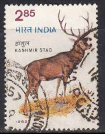 Used 1982, Wildlife Week, Red Deer Stag, Wild Life, Animal  ,  (sample Image) - Stamps