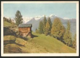 Walliser Berglandschaft Wallis 1948 - VS Valais