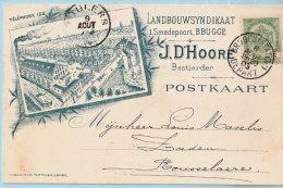 N° 56 Op Geïllustreerde Postkaart (Landbouwsyndikaat), Afst. BRUGES (STATION) DEPART 08/08/1903 Naar ROULERS 09/08/1903 - 1893-1907 Wapenschild