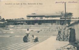 Beneficio De Café - Wm. Steinvorth & Hmo - Costa Rica