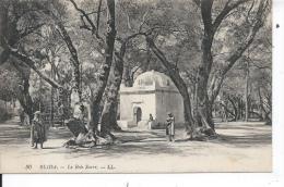 ALGERIE - BLIDA - Le Bois Sacré - Blida