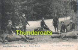 CPA LEOPOLDSBURG KAMP VAN BEVERLOO ** BOURG LEOPOLD CAMPE DE BEVERLOO ** CHEVAUX DRESSES - Leopoldsburg (Camp De Beverloo)