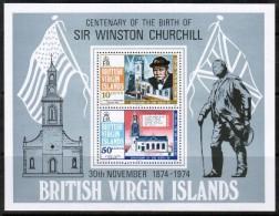 VIRGIN ISLANDS    Scott #  278-9a**  VF MINT NH Souvenir Sheet - British Virgin Islands