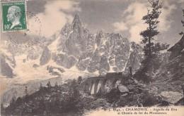 74 CHAMONIX AIGUILLE DU DRU ET CHEMIN DE FER DU MONTENVERS - Chamonix-Mont-Blanc