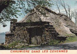 Cp , RÉGIONS , LANGUEDOC-ROUSSILLON , Vielle Maison Au Toit De Chaume , Chaumière Dans Les Cévènnes - Languedoc-Roussillon