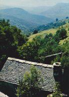 Cp , RÉGIONS , LANGUEDOC-ROUSSILLON , En Cévennes - Languedoc-Roussillon