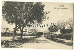 LUCERA - VIALE DEL BELVEDERE - Andere Steden