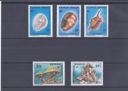 Polynésie Française. Coquillages Et Coraux - French Polynesia