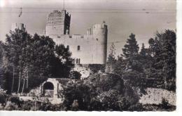 VILLENEUVE LOUBET -06- LE CHATEAU OU FRANCOIS 1ER SIGNA LA TREVE DE NICE EN 1538 - Autres Communes