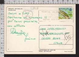 B8848 SEYCHELLES Postal History 1994 ANIMAL GECKO VERT - Seychelles (1976-...)