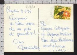 B8851 SEYCHELLES Postal History 1996 ANIMAL SUNBIRD - Seychelles (1976-...)