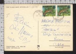 B8855 SEYCHELLES Postal History 1982 ANIMAL FISH LANGOUSTE PORT GLAUD MAHE - Seychelles (1976-...)
