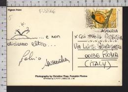 B8866 TRINIDAD TOBAGO Postal History 1995 ANIMAL BIRD PIGEON POINT - Trindad & Tobago (1962-...)