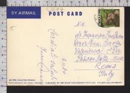 B8877 ZIMBABWE Postal History 1980 ANIMAL RHINO RINOCERONTE BIG TREE ALBERO GIGANTE - Zimbabwe (1980-...)