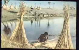 AK     PAKISTAN  JUTE HUSKING IN EAST - Pakistan