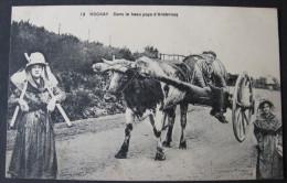 Hockay, Dans Le Beau Pays D'Ardennes - Edit. Hôtel Des Etrangers / M. Marcovici - Stavelot