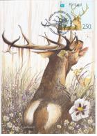Portugal 1991 Fauna Red Deer Animal Mammal - Cartoline Maximum