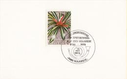 Maaseik - Verbroedering Postpersoneel Kinrooi - Maaseik 1950-1975 - 13 Mei 1975 - Post
