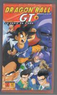 PELICULA En VHS - Original Usada - DRAGON BALL  Episodios - Manga