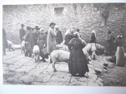 Cpa Dinan Au Marché ( Cochons ) - CO01 (pas De Frais De Port : Sans Vilain Jeu De Mots :-)) - Dinan
