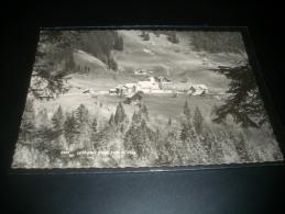 37403 Ebnit Dornbirn - Dornbirn