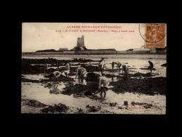 50 - SAINT-VAAST-LA-HOUGUE - Pêche à Marée Basse - 4146 - Saint Vaast La Hougue