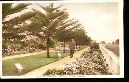 AUSTRALIE VICTOR HARBOR / Soldiers Memorial Gardens / - Victor Harbor