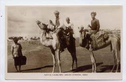 YEMEN--Native Camelmen Sheikh Othman (très Animée,chameaux) --ADEN - Yémen