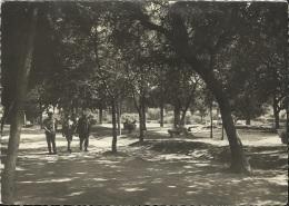 13 . MARSEILLE . CAMP SAINTE MARTHE . LES JARDINS . MILITAIRES - Parcs Et Jardins