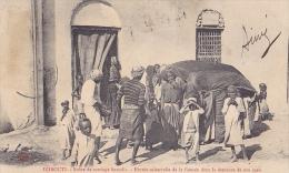DJ14  --  DJIBOUTI  --  SCENE DE MARIAGE SOMALIS  --  1910 - Dschibuti