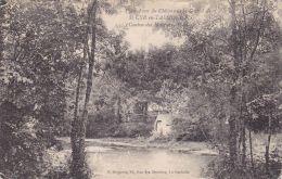 Cp , 85 , SAINT-CYR-en-TALMONDAIS , Plan D'eau Du Château De La Cour D'Aron - Moutiers Les Mauxfaits