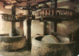 Panorama De La Corse Feliceto (Balagne) Le Moulin à Huile De L'Osteria Ambrosini - Craft