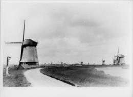 SCHERMER Bij Alkmaar (Noord-Holland) - Molen/moulin - Echte Foto 18x24 Cm.: Groep Van Ca. 15 Poldermolens (ca. 1920) TOP - Orte