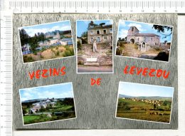 VEZINS DE LEVEZOU Et Ses Environs -  5 Vues Vezins Et Château, St Amans, Eglise Romane, Vue Générale Gleysenove, La Clau - France