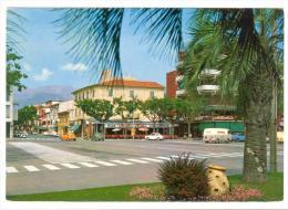 Y442 Marina Di Massa - Piazza Betti - Auto Cars Voitures / Non Viaggiata - Massa