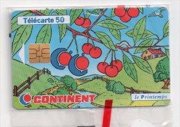 TELECARTE PHONECARD FRANCE 50 U NSB Continent Le Printemps - France