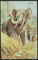 """Elephants"",   C1945, Based On A Painting By ""George Rankin"". - Elephants"