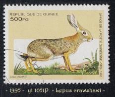 1995 - Afrique - Timbre De Guinée - 500 F.  Lepus Crawshayi -