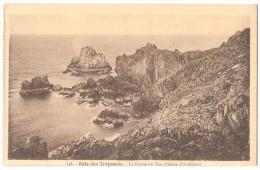 Dépt 29 - CLÉDEN-CAP-SIZUN - Baie Des Trépassés - La Pointe Du Van (région D'Audierne) - Cléden-Cap-Sizun