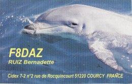 Amateur Radio QSL Card France F8DAZ Courcy Ruiz - Radio Amateur