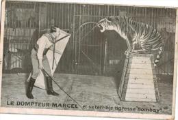 Carte Postale Ancienne Sur Le CIRQUE - Cirque
