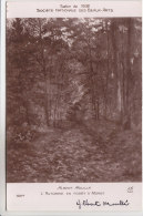 77 - Moret Sur Loing - Tableau D´Albert Moullé - L'Automne En Forêt - Carte Dédicacée Par Le Peintre - Moret Sur Loing