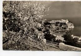 Lot De Trois Cartes De Monaco - Monaco
