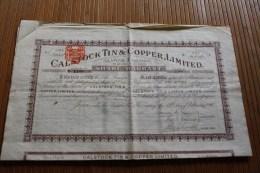 CALSTOCK  TIN & COOPER LIMITED ONE SHARE TITRE -ACTION Au Porteur 19 Février 1903 Judaïca Levy De Montreuil - Azioni & Titoli