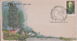 India   1987  Horned Deer  Crane Birds  Lotus Flower  Tree Lake  Special Cover.   # 49873 - Game