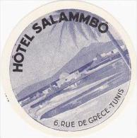 TUNISIA TUNIS HOTEL SALAMMBO VINTAGE HOTEL LABEL - Hotel Labels