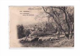 06 GRASSE Vue Générale, Vue Artistique Entre Les Oliviers, Troupeau De Moutons, Ed Giletta 584, Collection, 190? - Grasse