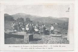 """83 // LA ROQUEBRUSSANNE    Aux """"grapperies De Provence""""    Un Atelier Volant De Cisellement Dans Le Vignoble - France"""