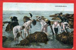 LUC SUR MER 1909 PECHE AUX MOULES CARTE EN  BON ETAT - Luc Sur Mer